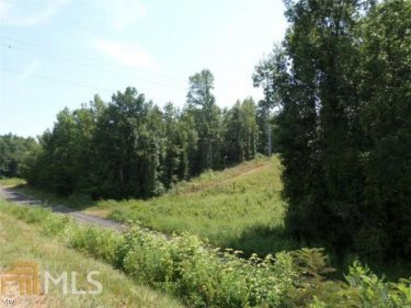 0 Mt Tabor Road, 39 AC